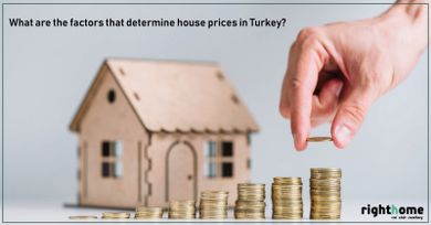 What are the factors that determine house prices in Turkey?